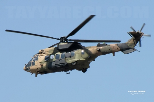 as532cougar-ceyhunpursak-2.jpg